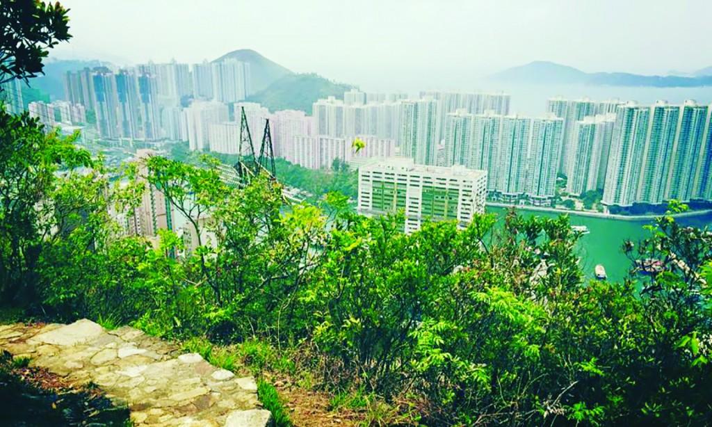 cmyk HK trail 2 copy