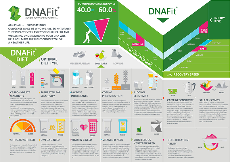 Example of DNAFit's analysis
