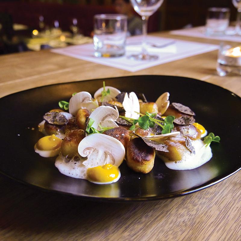 SAUTÉED GNOCCHI butternut condiment, parmesan emulsion, fresh black truffle, mushroom