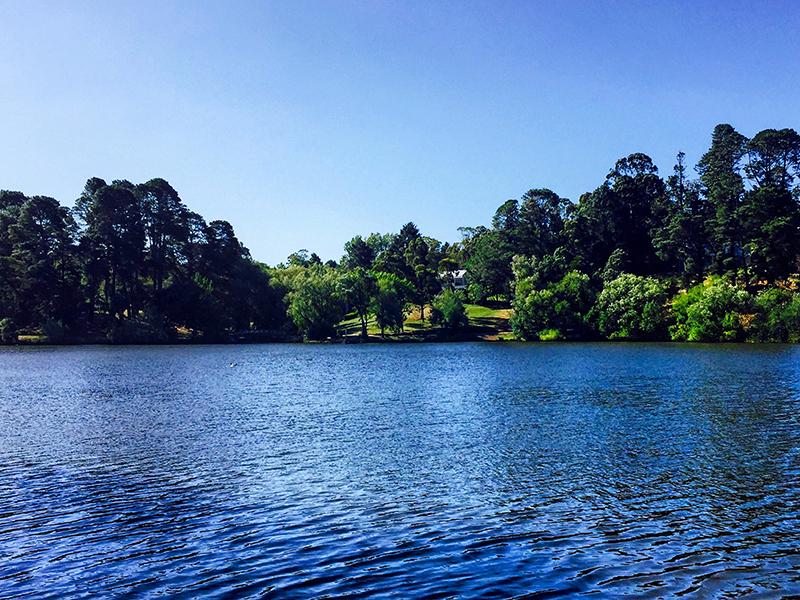lake-daylesford-copy