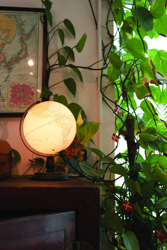 A lamp on a shelf next to a plant.