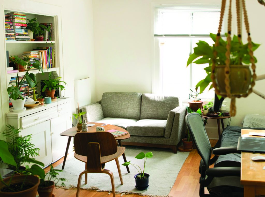 A living room decorated with plants.