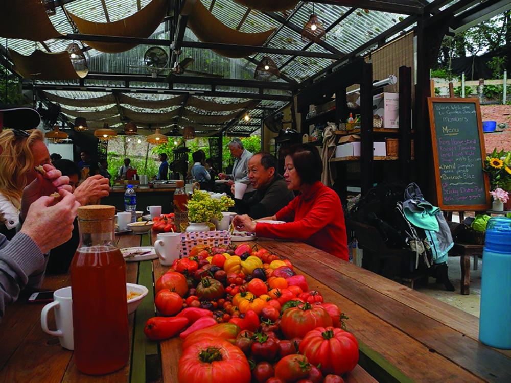 People sit around table at the Hong Kong Gardening Society Xmas Trawl, a wellness event in Hong Kong.