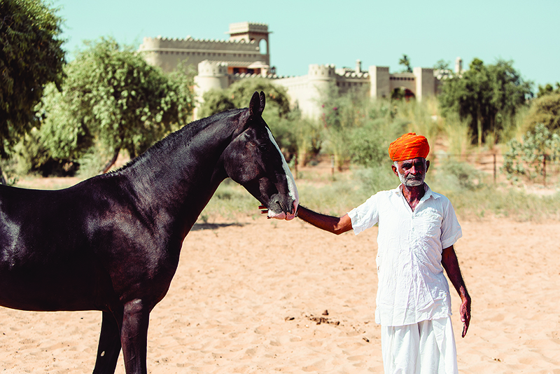 A man stands with a horse in India. India is a popular place for female solo travellers to go in Asia.