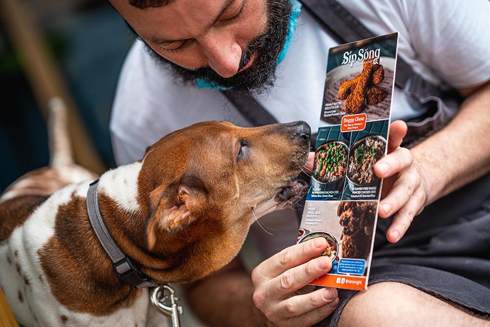 A dog licks a menu at Sip Song, a pet friendly restaurant in Hong Kong