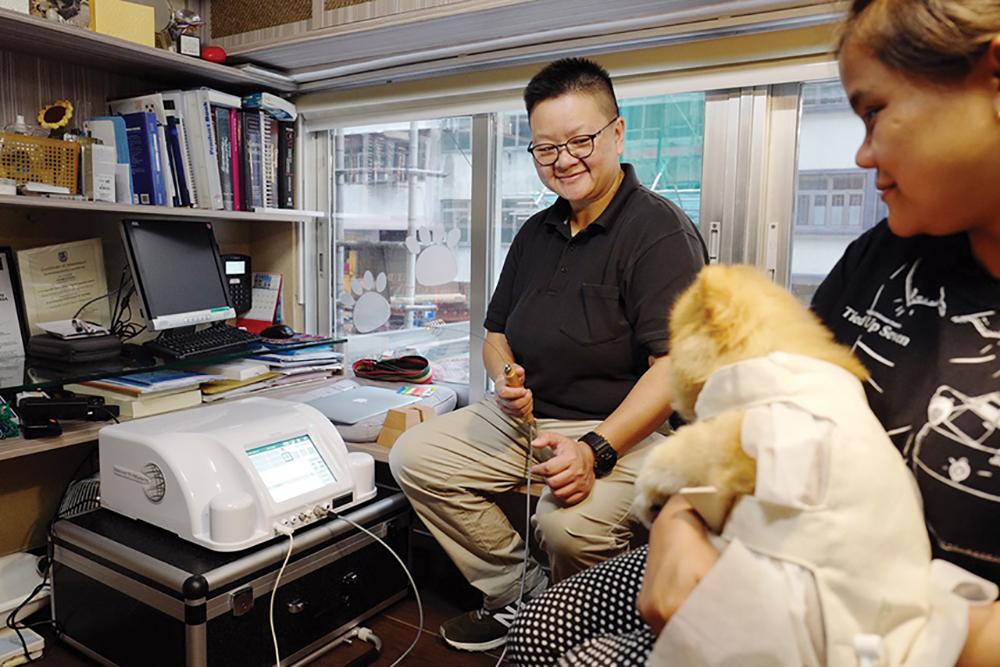 Monica Wai administers bioresonance at Waveworks, an alternative pet wellness centre in Hong Kong.